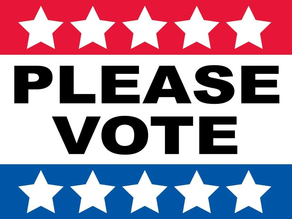 Candidate Amp Election Information Greater Dalton Chamber